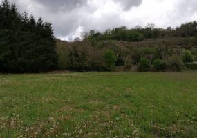 terrain,1097